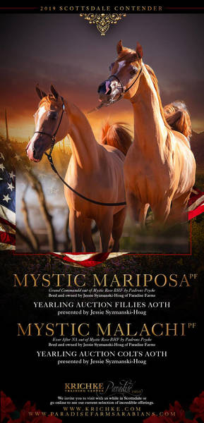 The Mystic Auction Yearlings...