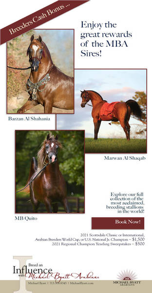 Breed an Influence with Michael Byatt Arabians