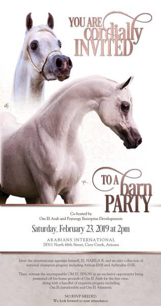 See El Nabila B & Om El Sinon on Saturday at Arabians International