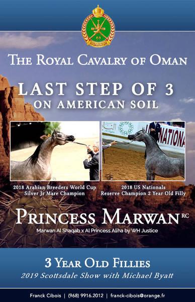 Princess Marwan RC returns!!!
