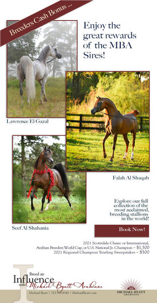 The Sires of Michael Byatt Arabians