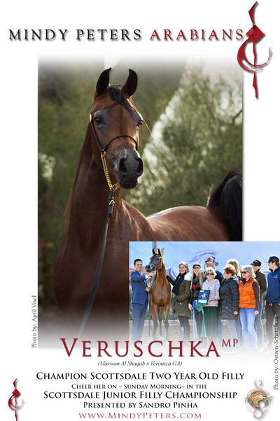 Scottsdale Champion ~ Veruschka MP ~ See Her Sunday Morning in Wendell!