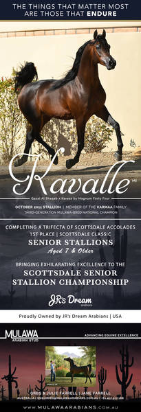 A Commanding Performance in Scottsdale | KAVALLE MI