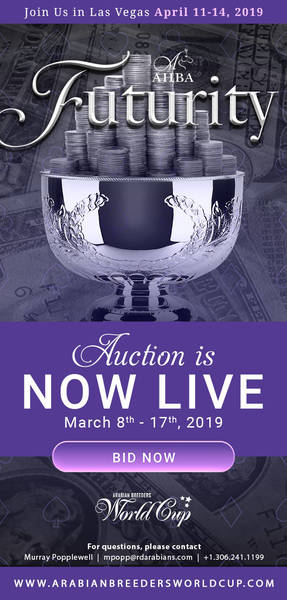 ABHA Futurity Auction...NOW LIVE!