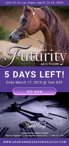 AHBA Futurity Auction..5 days Remaining!