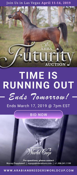 AHBA Futurity Auction.. Ends Tomorrow!!