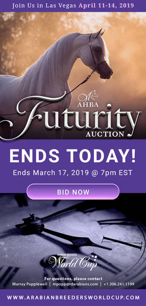 AHBA Futurity Auction.. Ends Today!!