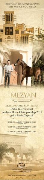 D Mezyan | Dubai 2019