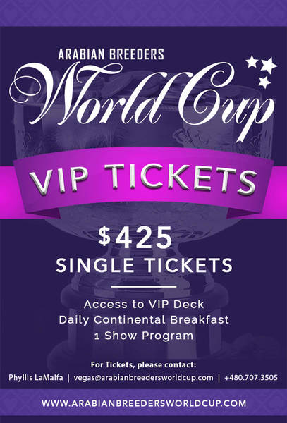 World Cup - V.I.P. Single Tickets