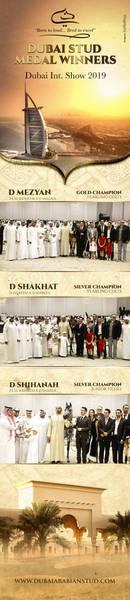 Dubai Stud Medals Winners   Dubai 2019