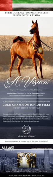 A VISION in Gold   Success for Al Bidayer at DIAHC