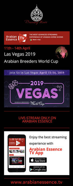ABWC - Live Feed - Arabian Essence TV