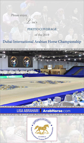 Please enjoy Lisa's PHOTO coverage of Dubai...!