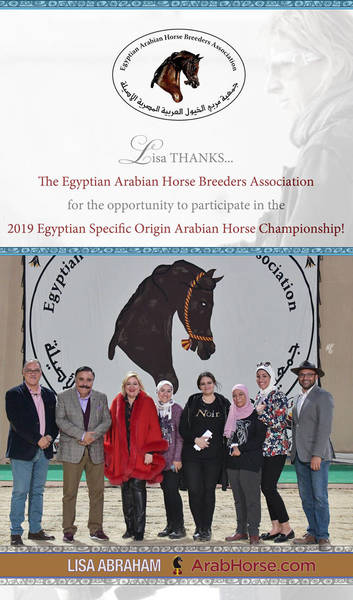 Lisa THANKS the Egyptian Arabian Horse Breeders Association...!