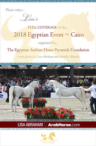 Please enjoy Lisa's FULL coverage of the 2018 Egyptian Event ~ Cairo!
