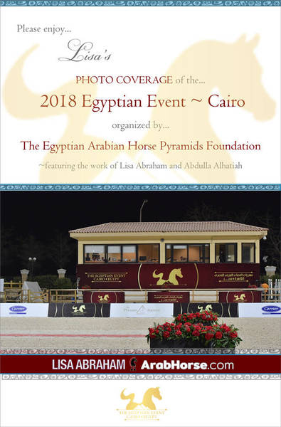Please enjoy Lisa's PHOTO COVERAGE of the 2018 Egyptian Event ~ Cairo!