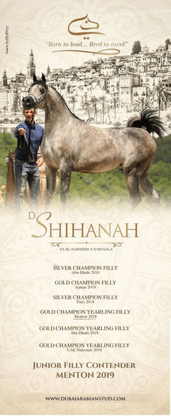D SHIHANAH |Menton 2019 Contender
