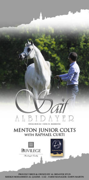 Discover Saif AlBidayer In Menton!