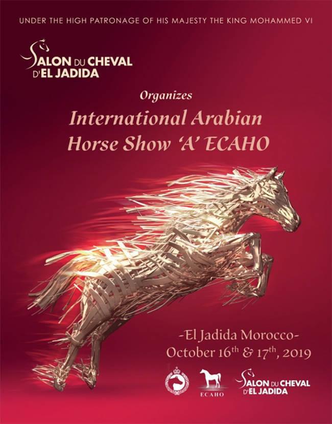 Salon Du Cheval D'El Jadida | October 16th & 17th 2019