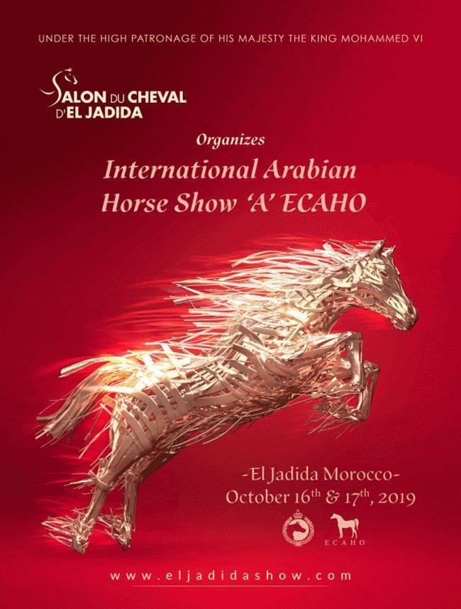 Salon Du Cheval D'El Jadida | October 16th & 17th 2019 | International Arabian Horse Show 'A' ECAHO