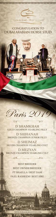 Dubai Stud | Paris 2019