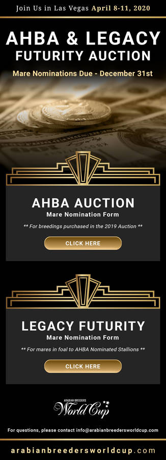 AHBA & Legacy Futurity Auction - Nominations Due December 31st