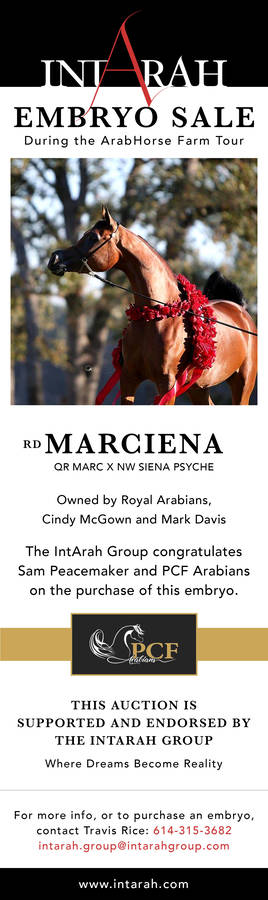 IntArah Group Congratulates PCF Arabians