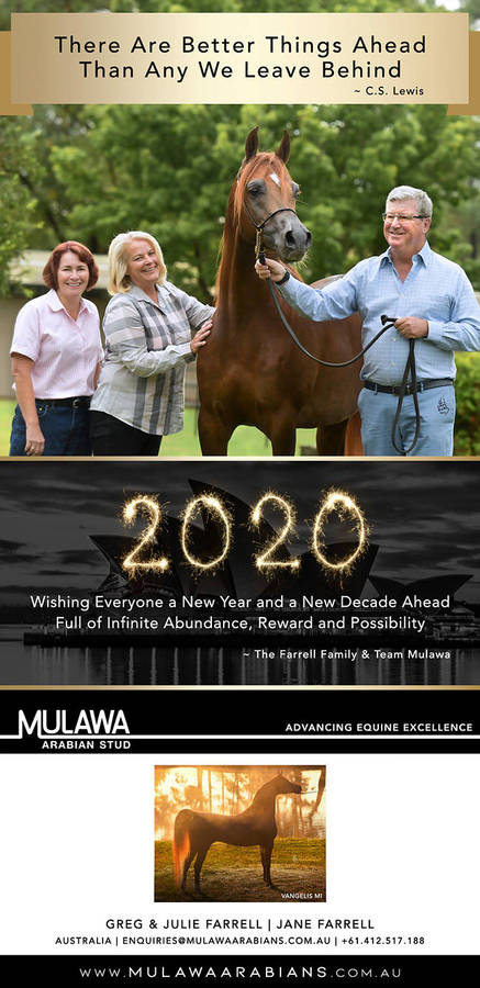 New Year Wishes from Mulawa Arabian Stud