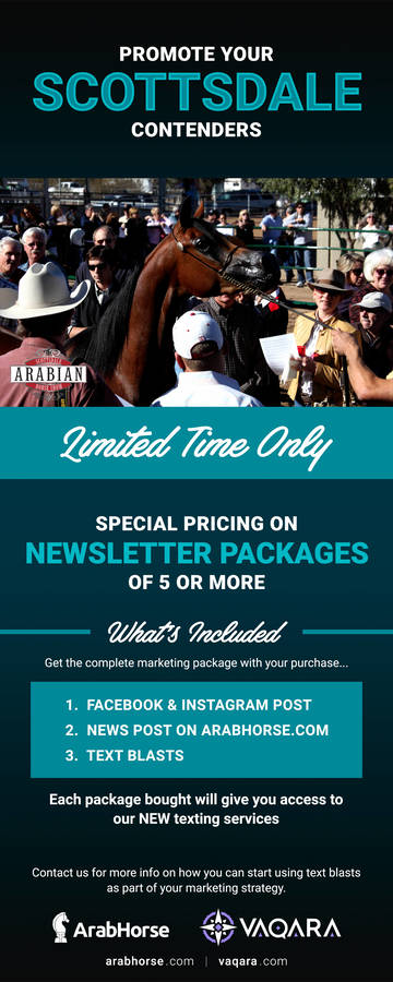 Save On Newsletter Packages - Limited Time Only