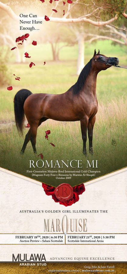 The Enduring Allure of ROMANCE MI | Marquise Invitational - 21 Feb 2020