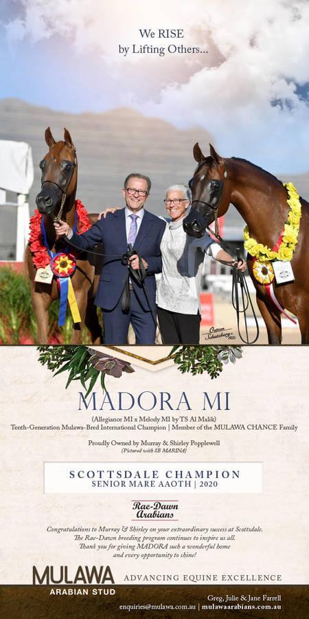 Celebrating the International Mulawa Community | MADORA MI & Rae-Dawn Arabians