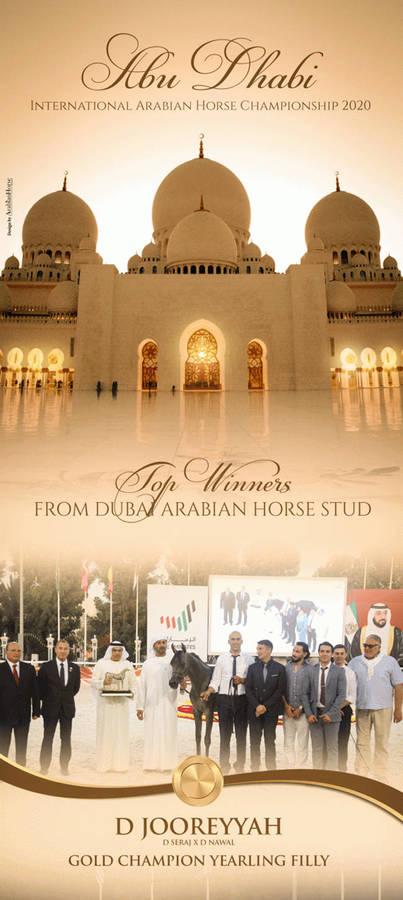 Dubai Arabian Horse Stud |  Abu Dhabi 2020 international Championship