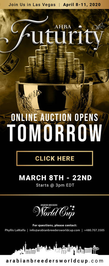 ABHA Futurity Auction...OPENS TOMORROW!
