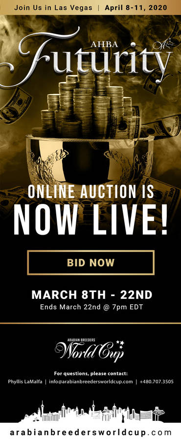 AHBA Futurity Auction...NOW LIVE!