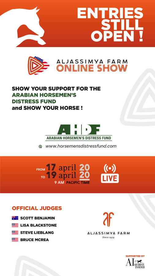 Show Your Horse and Show Your Support for the Arabian Horseman's Distress Fund