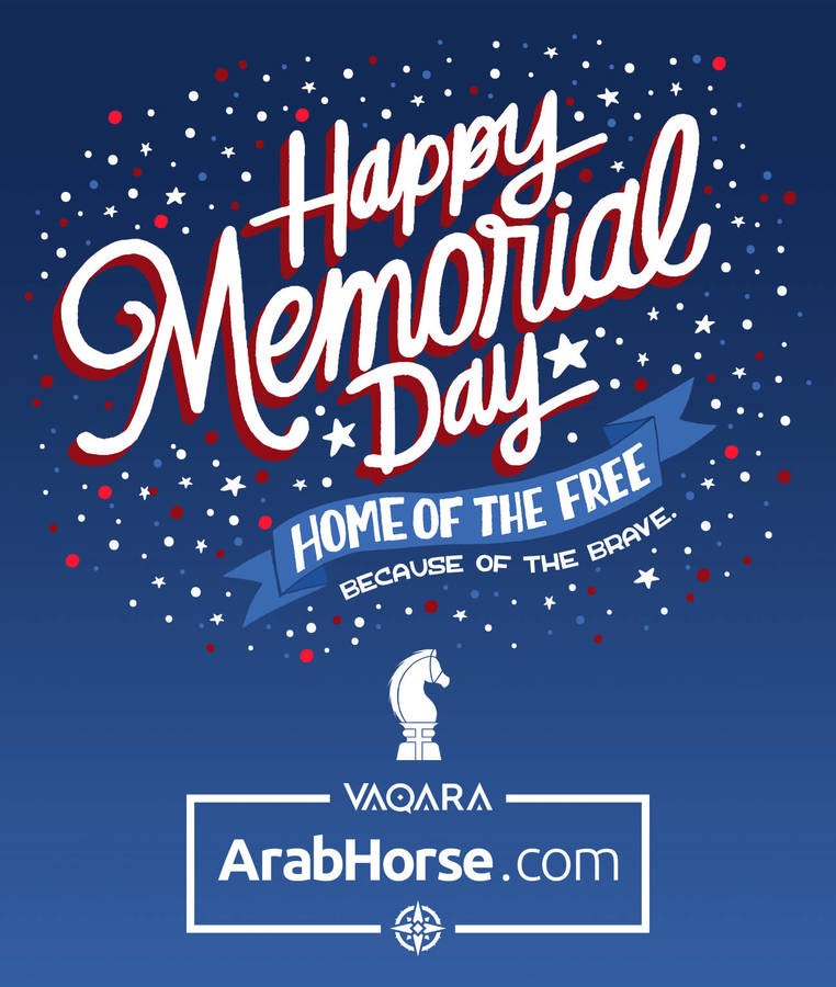 Happy Memorial Day from ArabHorse.com!