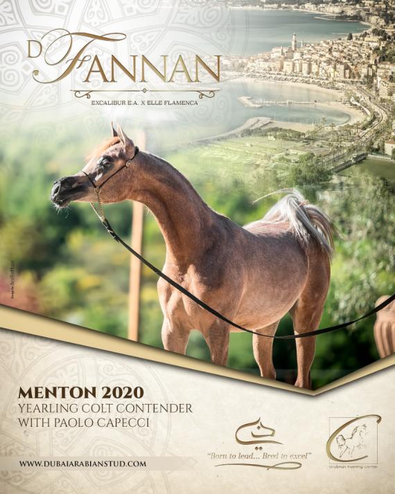D FANNAN - Menton 2020