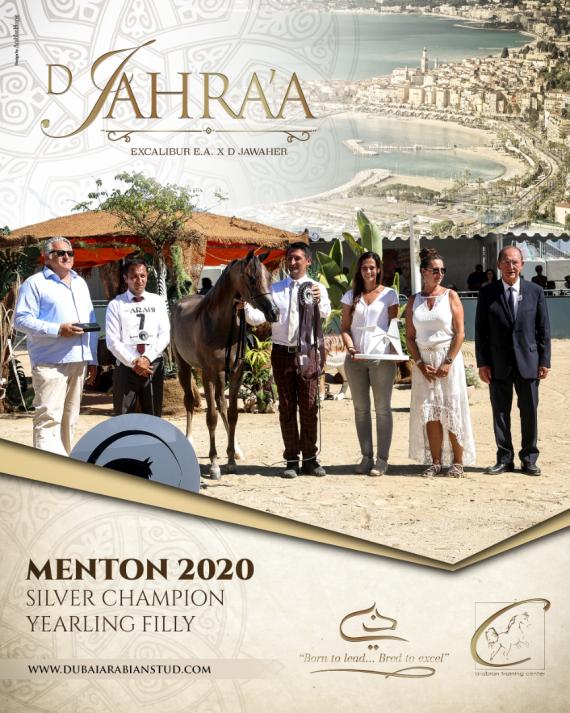 D JAHRA'A - Menton Silver Champion