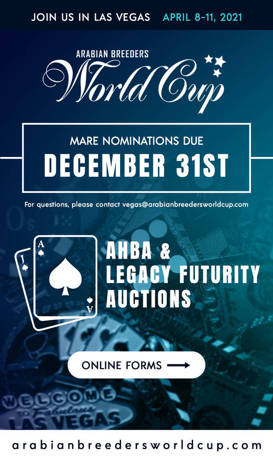Nominations Due in 3 WEEKS ~ AHBA & Legacy Futurity Auctions