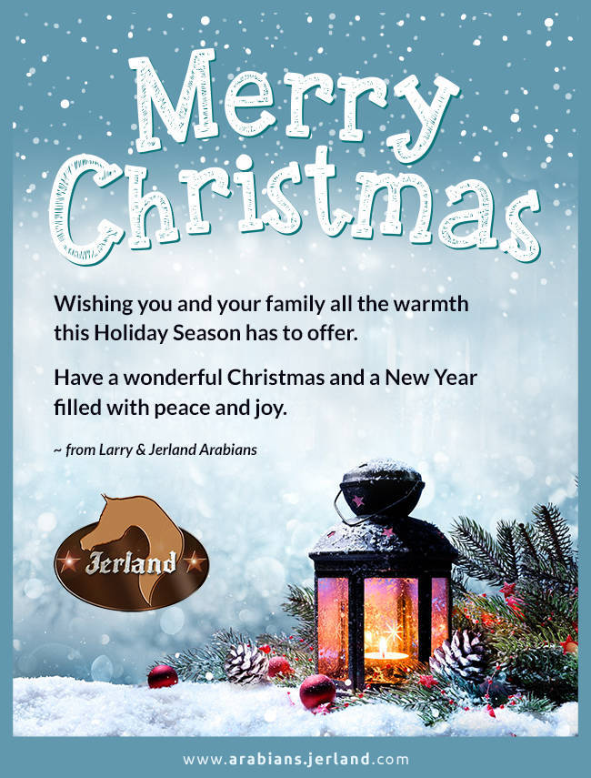 Merry Christmas from Jerland Arabians
