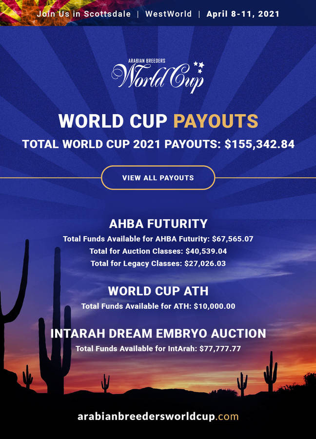 2021 World Cup Payouts