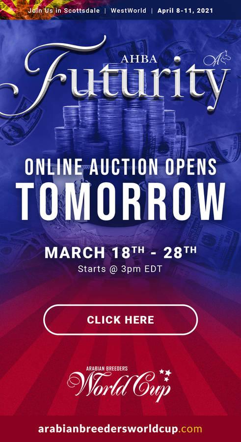 AHBA Futurity Auction...OPENS TOMORROW!