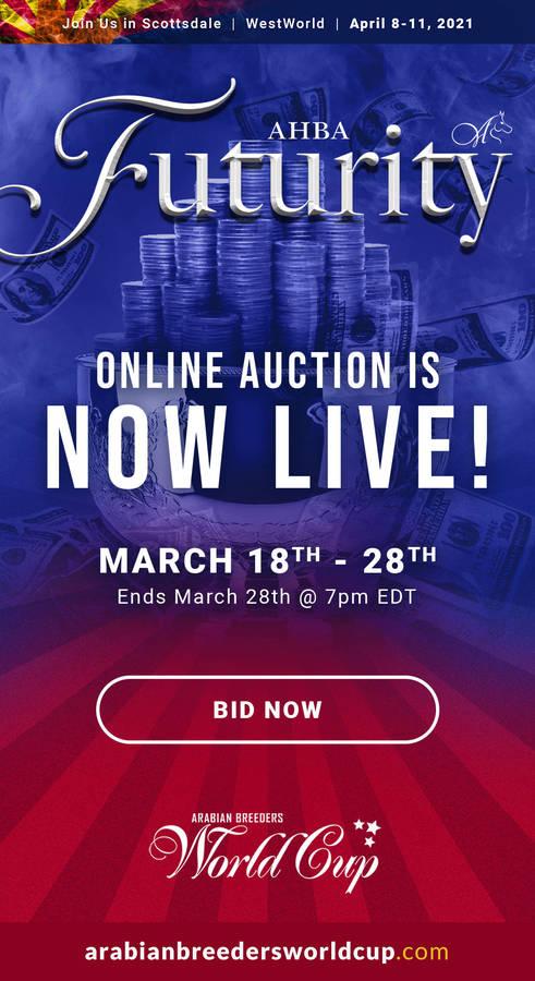AHBA Futurity Auction...NOW LIVE!