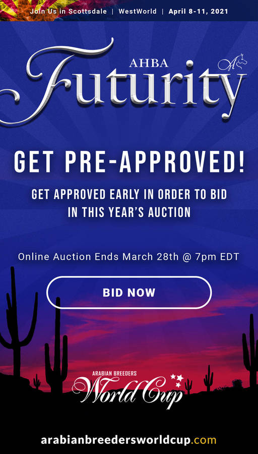 GET PRE-APPROVED to bid in the 2021 AHBA Futurity Auction