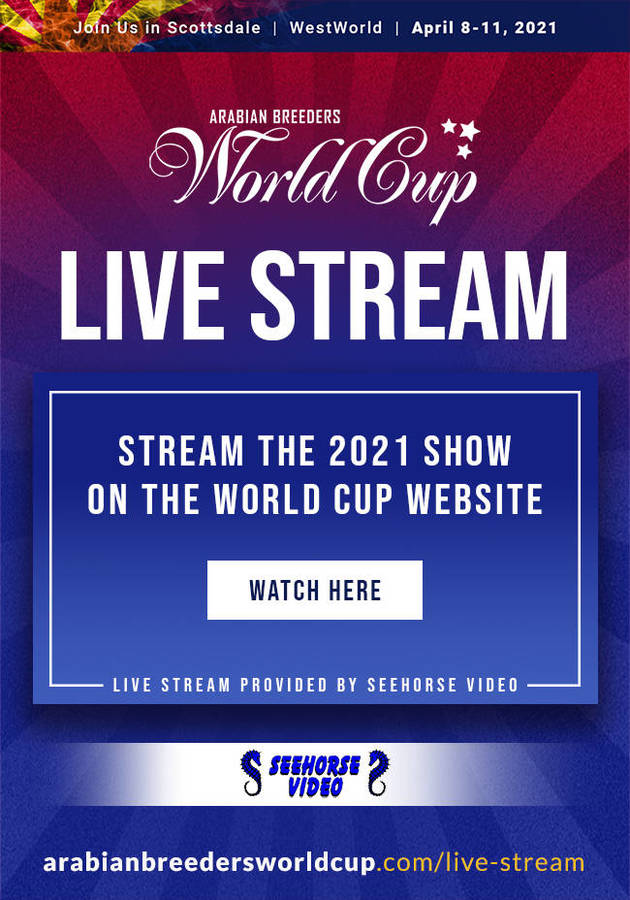 LIVE STREAM the 2021 World Cup Show