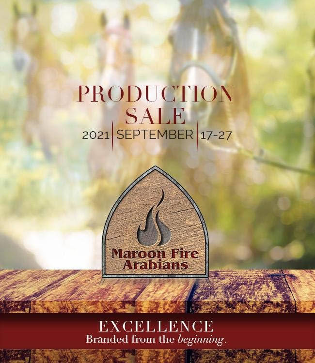 Maroon Fire Production Sale