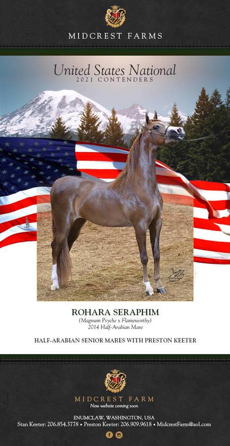 MIDCREST presents Rohara Seraphim   H/A Sr. Mares