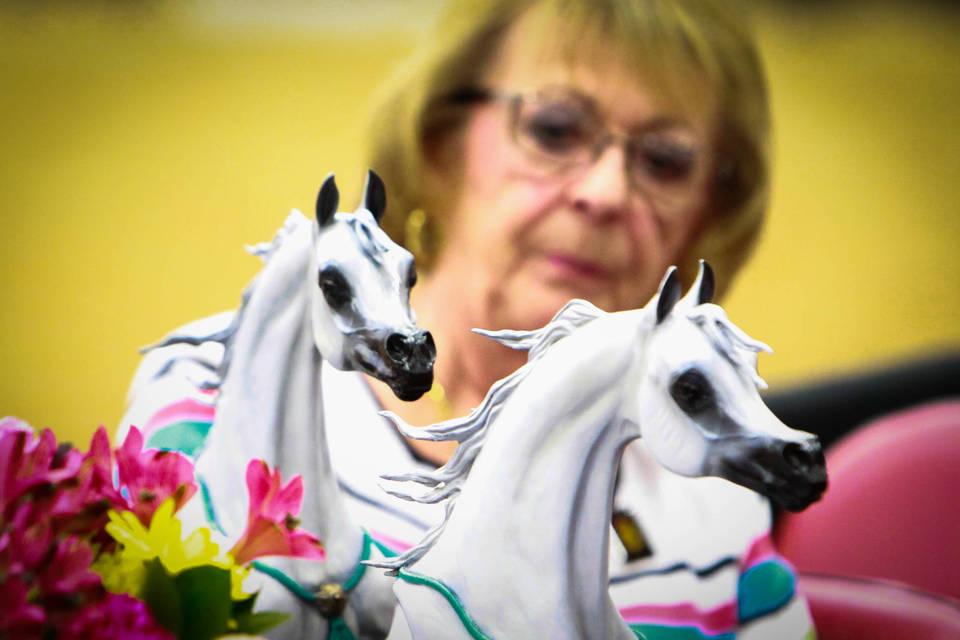 Judy Sirbasku - Lifetime Achievement Award