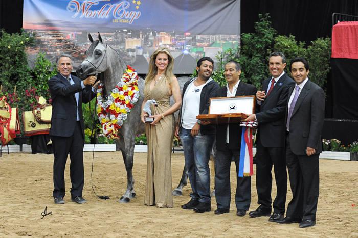 ABWC Junior Mare Supreme Silver Champion - Patriciaa