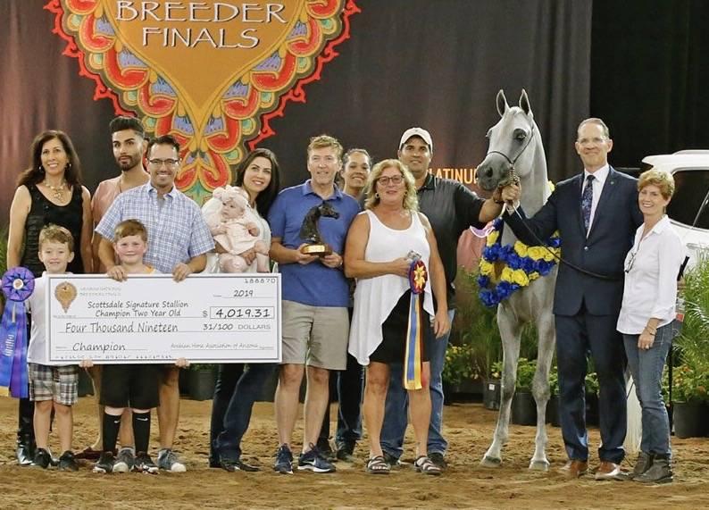 Kamal Al Khalif - 2019 Champion Arabian National Breeder Finals SSS Two-Year-Old Colt